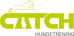 Catch Hundetrening