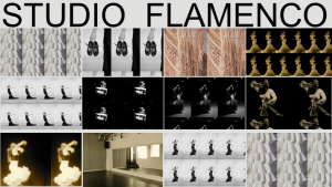 Studio Flamenco