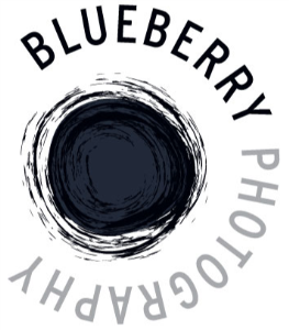 Blueberry Photography