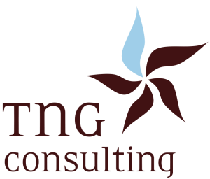 TNG Consulting